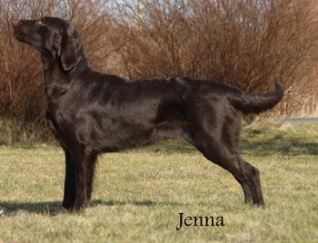 Jenna20140525 (1)
